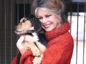 Brigitte Bardot Cancer du sein
