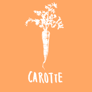 CAROTTE - MEME COSMETICS- aliment qui protege contre cancer