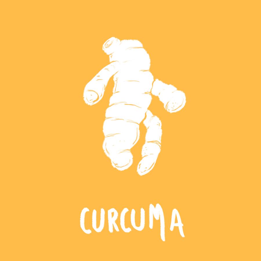 CURCUMA-MEME COSMETICS - les aliments contre le cancer