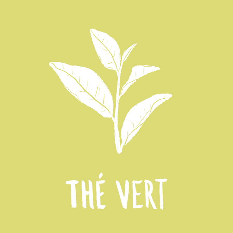 the vert contre le cancer MÊME cosmetics