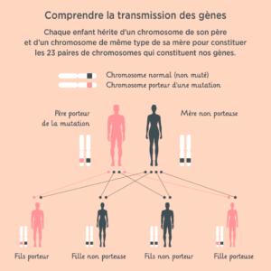 Risques de transmission d'un cancer