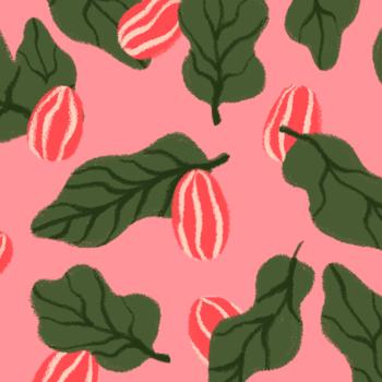 Le Beurre de Karité : un secret de beauté aux 1000 bienfaits