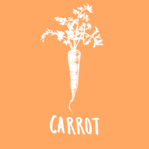 Top 9 anti-cancer foods list carrot